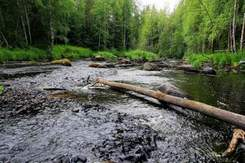 Скачать кадышева течет ручей